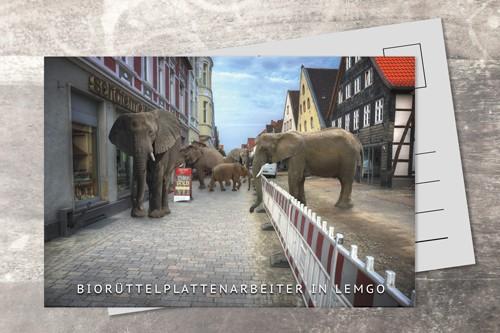 Postkarte 10x15 Elefantenbelagtest