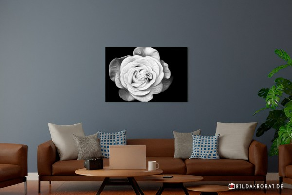 Druck Rose gemalt Optik